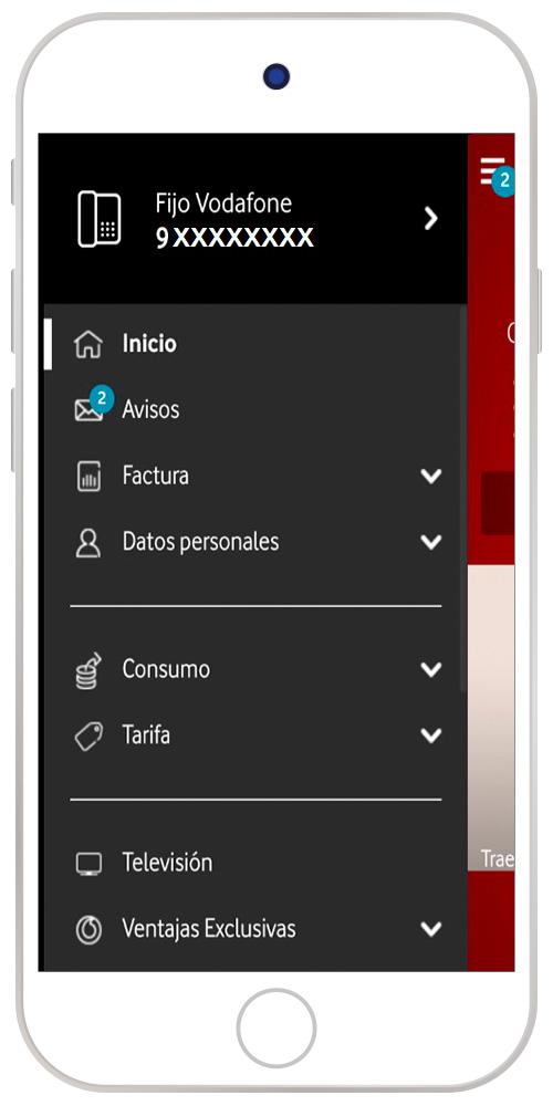 Imagen con la opción Televisión seleccionada en la app
