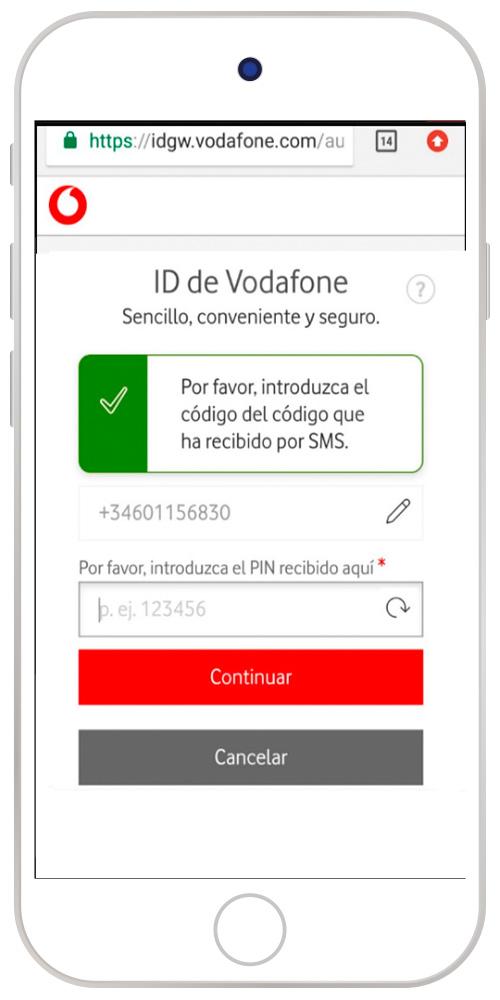 Imagen de la web pidiendo el PIN móvil